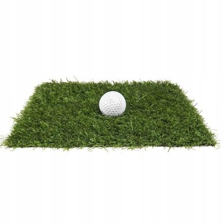 Sztuczna trawa Erba (1)