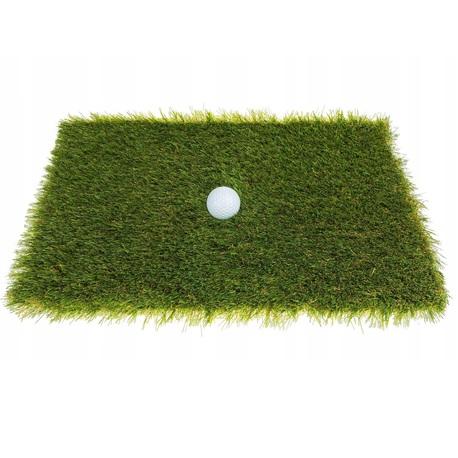 Sztuczna trawa Spa (1)