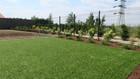 Sztuczna trawa Havanna (6)