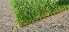 Sztuczna trawa Mileno Verde (6)