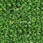 Sztuczna trawa Astro (5)