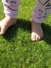 Sztuczna trawa Havanna (9)