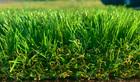 Sztuczna trawa Mileno Verde (5)