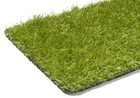 Sztuczna trawa Havanna (2)